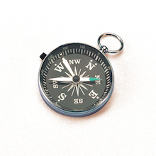 Deluxe Eight Point Compass  medium