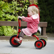Winther Low Step Trike  medium