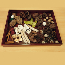 Natural Wooden Sorting Tray  medium