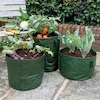 Vegetable Planters 3pk  small