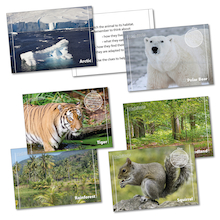 Habitats Matching Activity Cards  medium