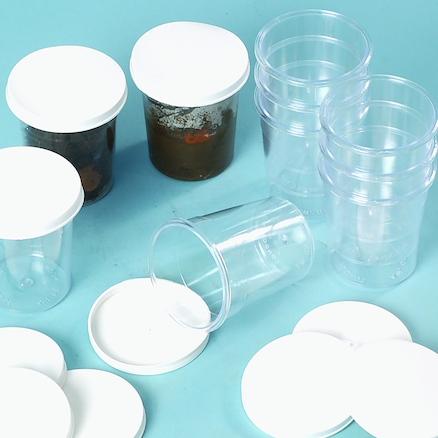 Clear Plastic Pots With Lids 10pk  large
