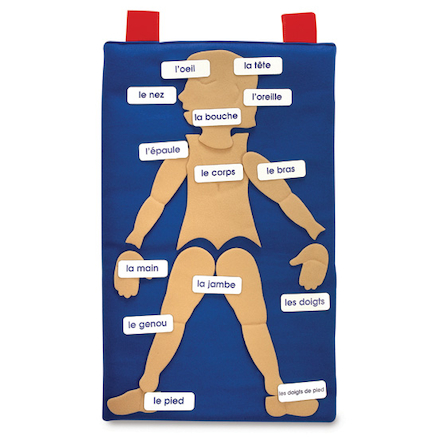 French Of The Body Vocabulary Wall Hanging  large
