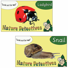 Spotting Nature Signs 10pk  medium