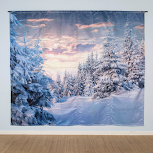 Immersive Environments Backdrops Frozen  medium