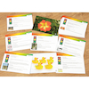 Maths Photos and Activity Cards 30pcs  small