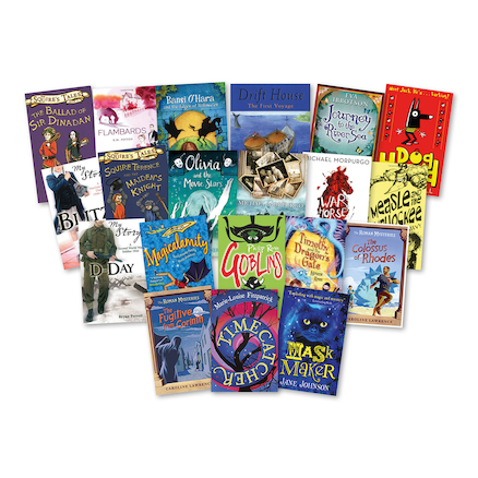 Year 6 High Achieving Reader Books 20pk  large