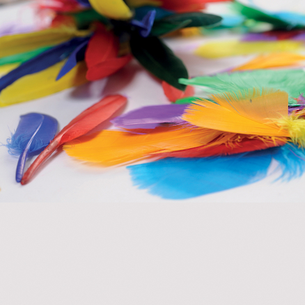Brightly Coloured Feathers 14g  large