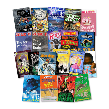 Year 6 Lower Ability reader Books 20pk  large
