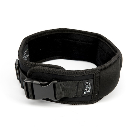 Weighted Therapy Belt  large