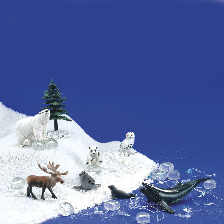 Buy Polar Regions Small World Animal Set 13pcs Tts