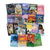 Year 6 Lower Ability reader Books 20pk  small