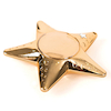 Recordable Talking Metallic Gold Star Rewards 6pk  small