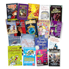 Level 15 Burgundy Band Books 20pk  small