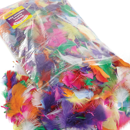 Assorted Rainbow Craft Feathers 225g  large
