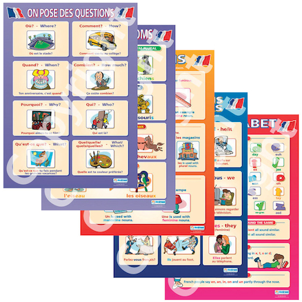 French Vocabulary Posters 5pk  large