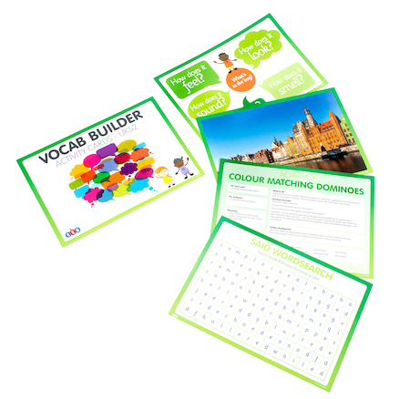 Vocabulary Builder Activity Cards  large
