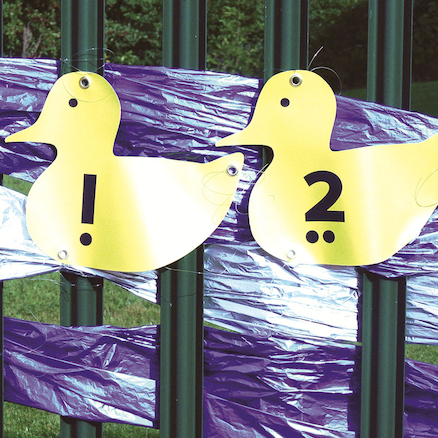 Outdoor Plastic Number Ducks 1-10  large