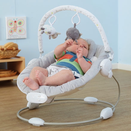 Baby Bouncer  large