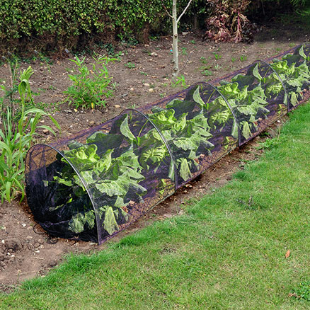 Netting Pop Up Poly Tunnel  large