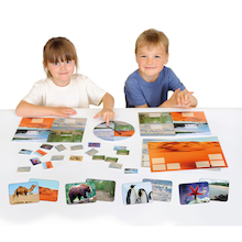 Animal Habitats Sorting Game  medium