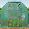 Poly Tunnel Greenhouse  small