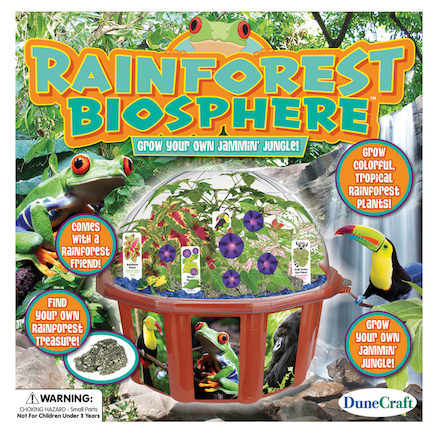 Make Your Own Rainforest Biome Kit  large