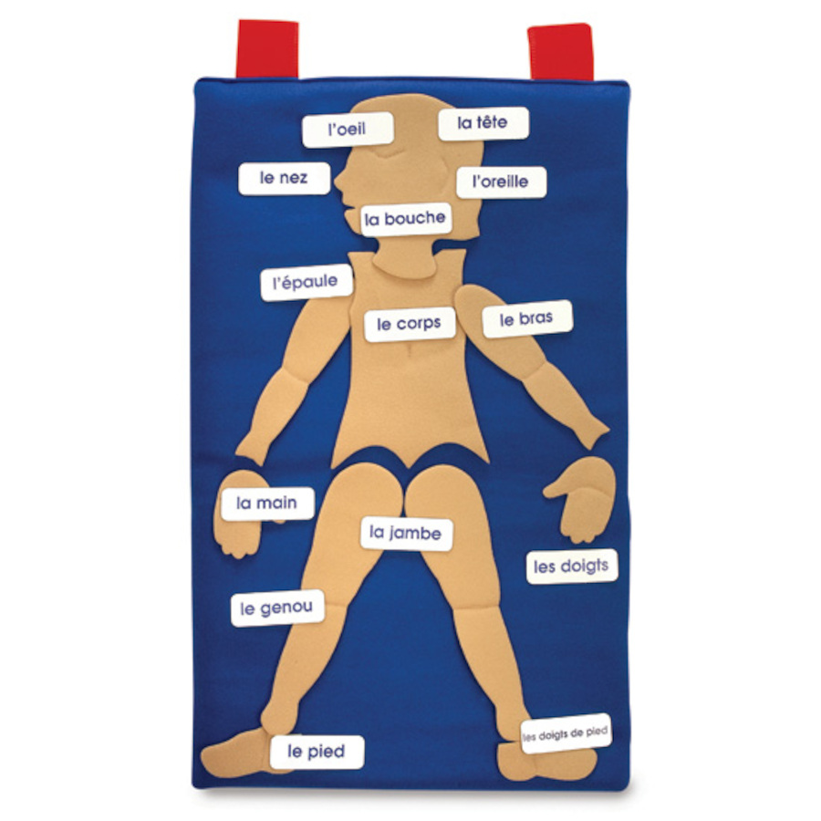 Buy French Parts Of The Body Vocabulary Wall Hanging Tts
