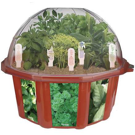 Grow Your Own Herbs Garden Dome  large