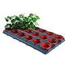 Plant Potting Tray  small