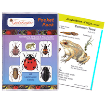 Land and Freshwater Invertebrate ID Cards  medium