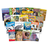 KS1 All About Animals Books 20pk  small