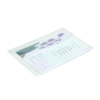 Foolscap Polyfile Wallet Folder  small
