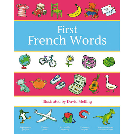 Oxford First French Words Dictionary  large