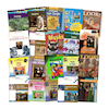 KS2 Art and Design Books 20pk  small