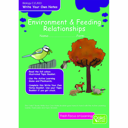 KS3 Environment Revision Activity Cards 10pk  large