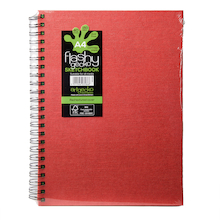 A4 Flashy Gecko Sketchbooks 150gsm 5pk  medium