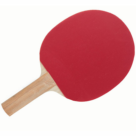 Starter Table Tennis Bat Pimples Out  large