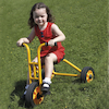 Rabo Large Trike  small
