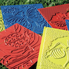 Plastic Bug Rubbing Plates Assorted 6pk  small
