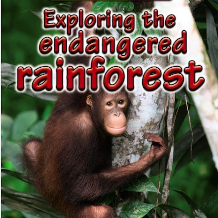 Exploring the Endangered Rainforest Book  large