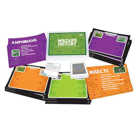 Classification: Wildlife Activity Cards  large
