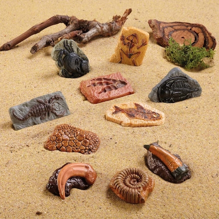 Sand Play Ancient Fossil Replicas 10pcs  large