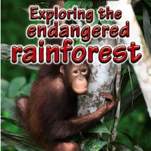 Exploring the Endangered Rainforest Book  medium
