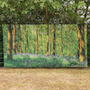 Outdoor Immersive Environments Backdrop Forest  small