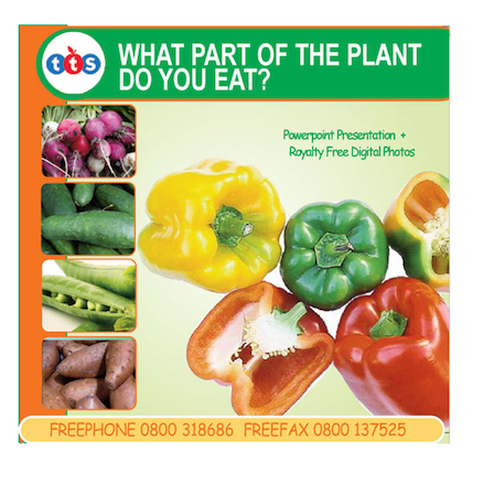 What Part of the Plant do you eat? CD Rom  large