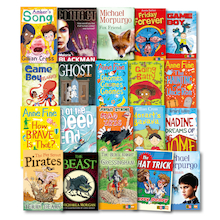 Reading Age 7 Primary Book Pack  medium