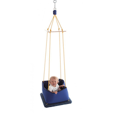 Sensory Therapeutic Swing and Safeguards  medium