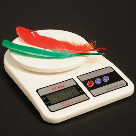Super Accurate Digital Science Weighing Scales  large