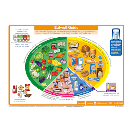 The Eatwell Plate Floor Mat A1  large